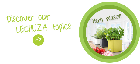 Discover our LECHUZA topic: LECHUZA's herb season