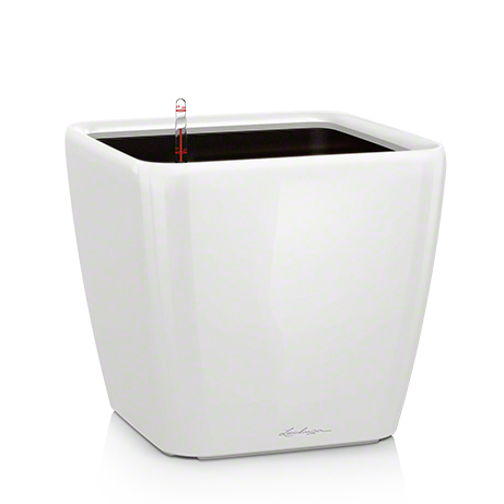 QUADRO LS 21 white high-gloss All-in-One Set