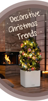 Festive Christmas Ideas