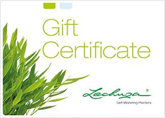 gift certificate green